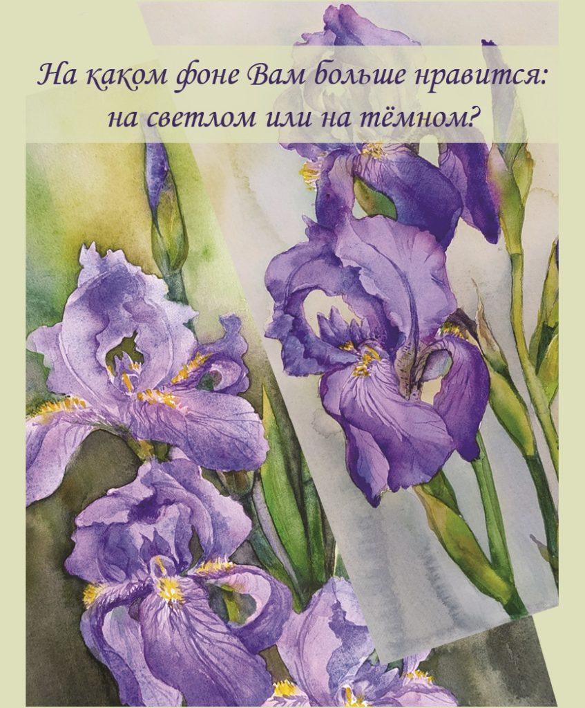 Ирисы опрос Картины Акварель А4 Написаны Наталией Поповой - Профессиональным Художником в 2020 году
