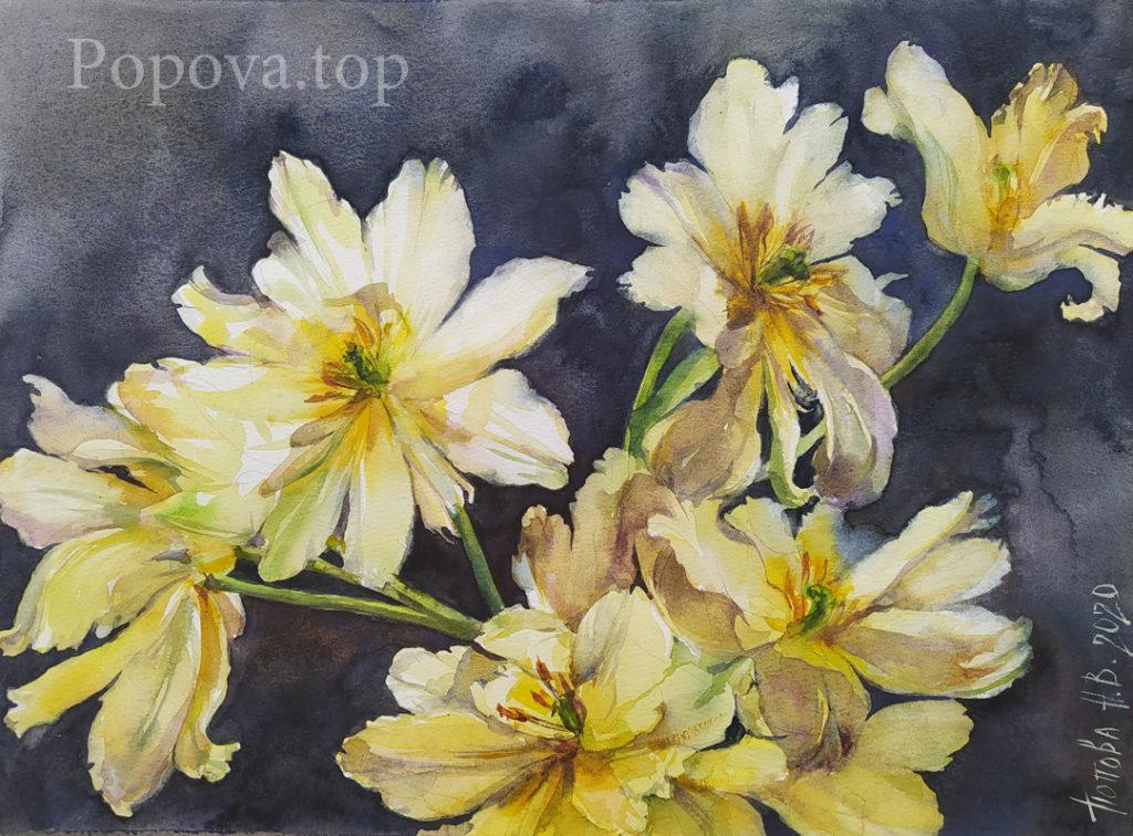 Лохматые тюльпаны - Картина Бумага Акварель 28х36 Написана Наталией Поповой - Профессиональным Художником в 2019 году доработана в 2020